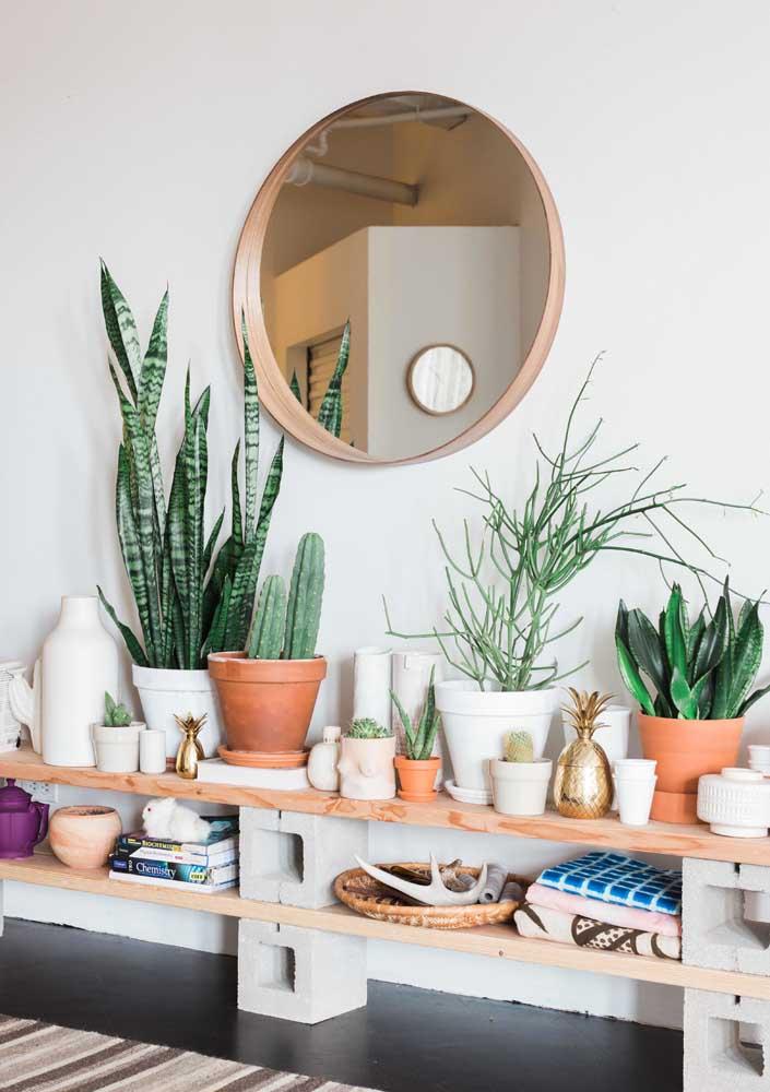 Visual rústico e despojado para as plantas da sala