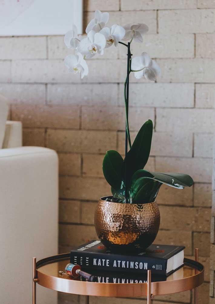 Um vaso tão sofisticado quanto a orquídea