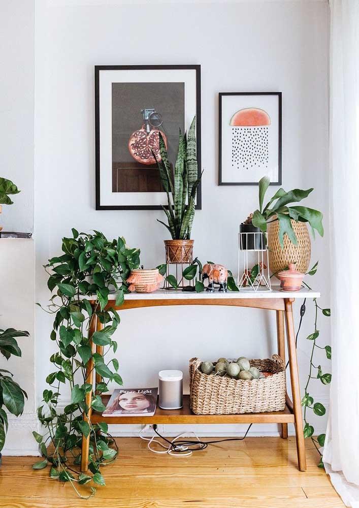Transforme o aparador da sala em habitat das plantas
