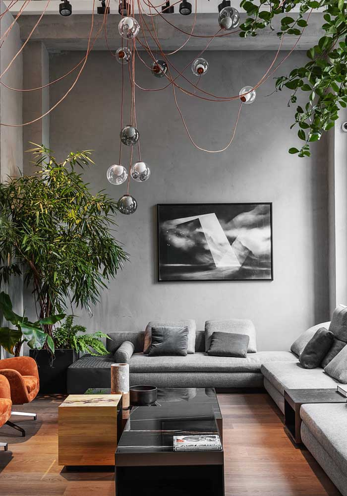 As plantas trazem conforto para a sala moderna
