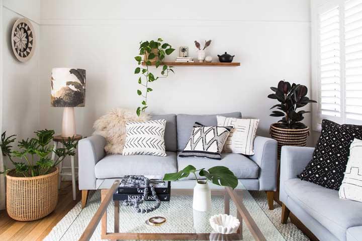 Use as plantas para sala pequena encostadas perto da parede ou suspensas no alto
