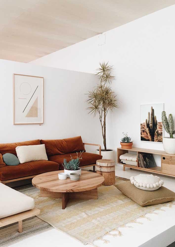 Sala decorada com plantas e um leve toque de rusticidade