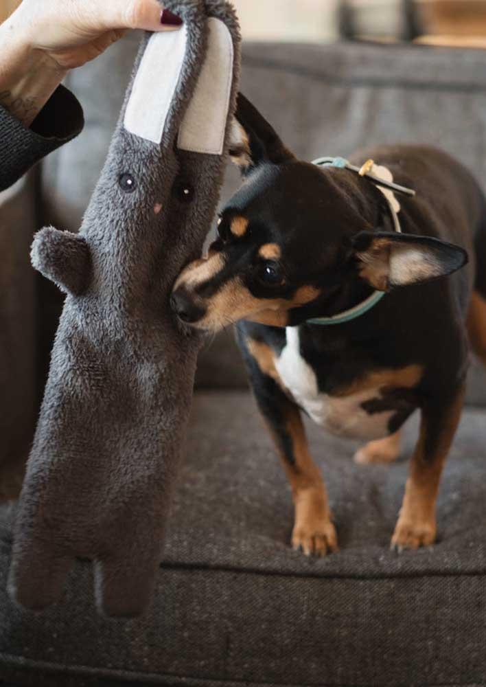 Vai um brinquedinho pro seu pet aí?