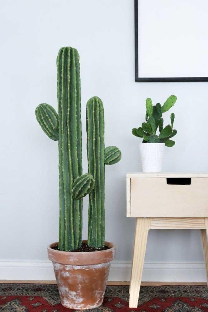 Os cactos são plantas ornamentais rústicas e que super combinam com decorações desse tipo