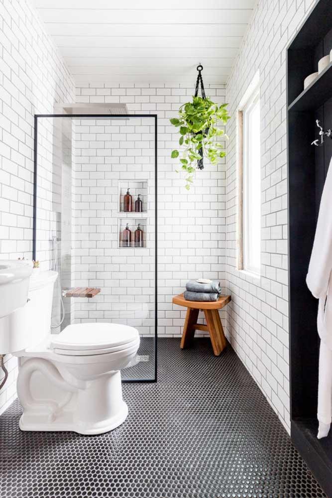 A jiboia também é uma linda opção de planta ornamental para banheiro