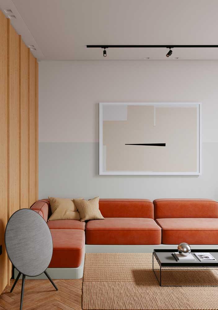 Sala minimalista com enfeite discreto