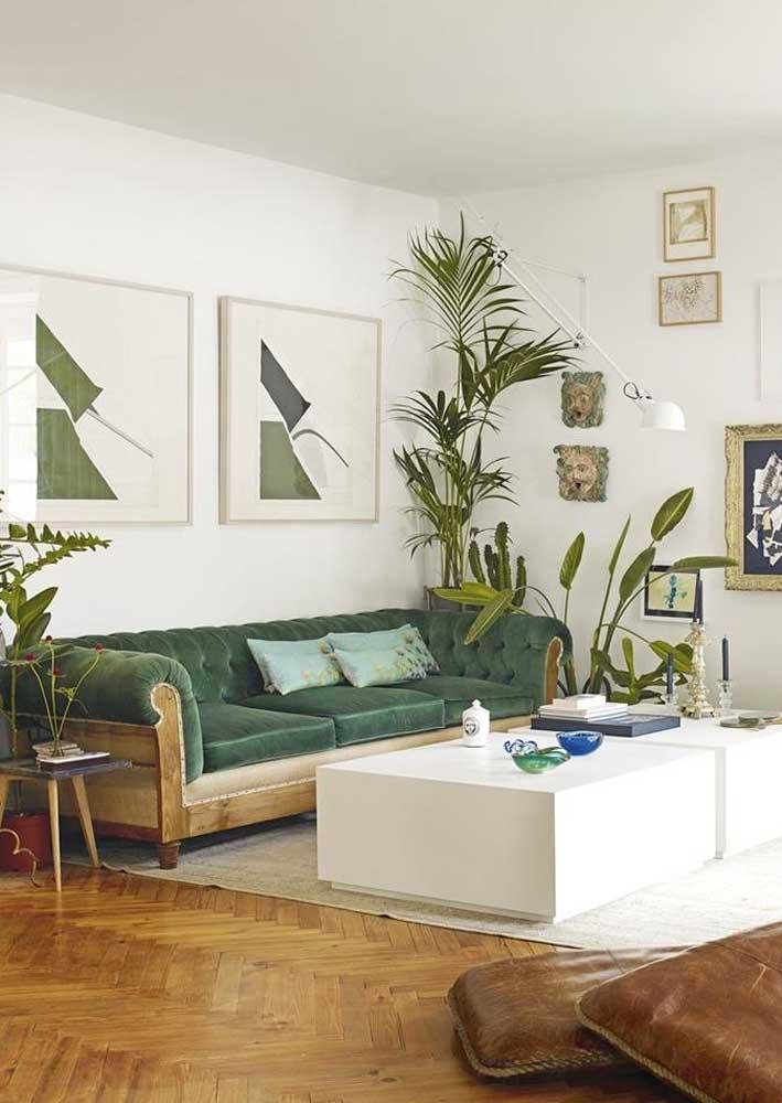 Os tons amadeirados casam perfeitamente com o sofá verde escuro